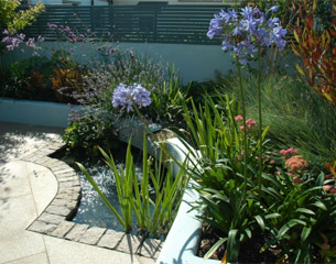 Focal point water feature in Dublin garden design